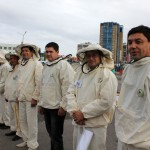 За два дня на площади перед ипподромом «Акбузат»  прошли республиканские конкурсы профессиональных  пчеловодов и юных пасечников.