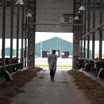 Инвестиции в молочную отрасль - иногда это похоже на подвиг