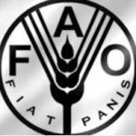FAO_1