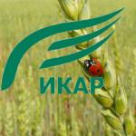 IKAR_logo_1