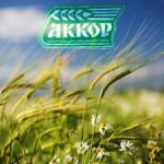 AKKOR_2