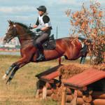 konevodstvo_sport