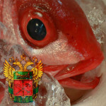 riba_tamosgnya