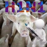 vakcina_svin_gripp_2