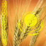 wheat_Kazahstan