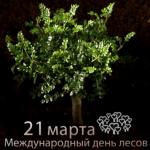 Den_lesov