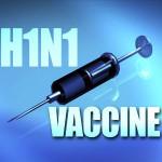 vakcina_svin_gripp_1