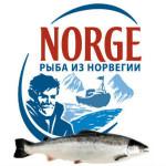 riba_Norvegia