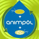 Animpol