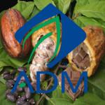 ADM_kakao