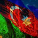Azerbaidzhan_wheat