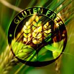gluten_1