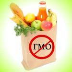 GMO_3