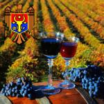 Moldova_vino