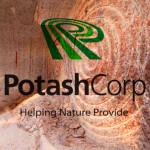Potash_1
