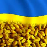 Ukraina_7