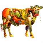 eda_vegetarian_1