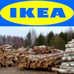 IKEA_mebel_2