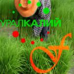 Uralkali_FELDA