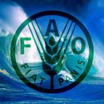 FAO_2