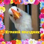 Kurini_prazdnik_2