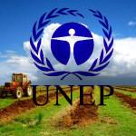 UNEP_1
