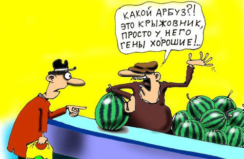 GMO_karikatura