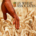US_Wheat_Associates_1