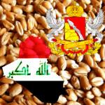 Irak_Voronezgskaya_obl