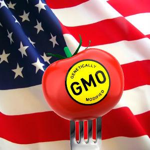 GMO_12