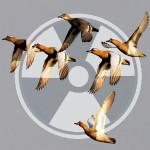 radiaciya_3