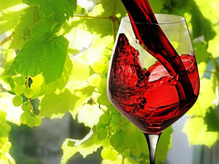 vino_big