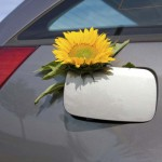 Biodiesel_In_Car