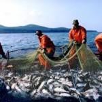 рыболовство норвегия