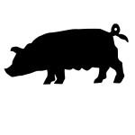 pork_meat