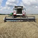 уборка зерна