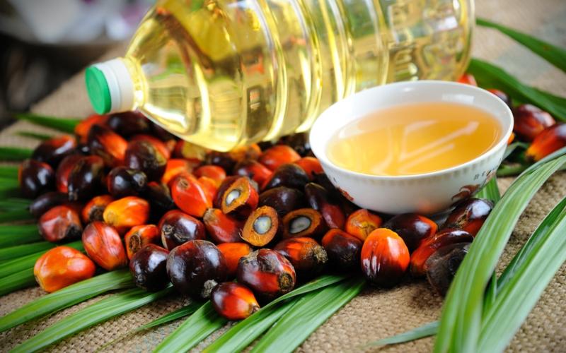Запрет на ввоз пальмового масла