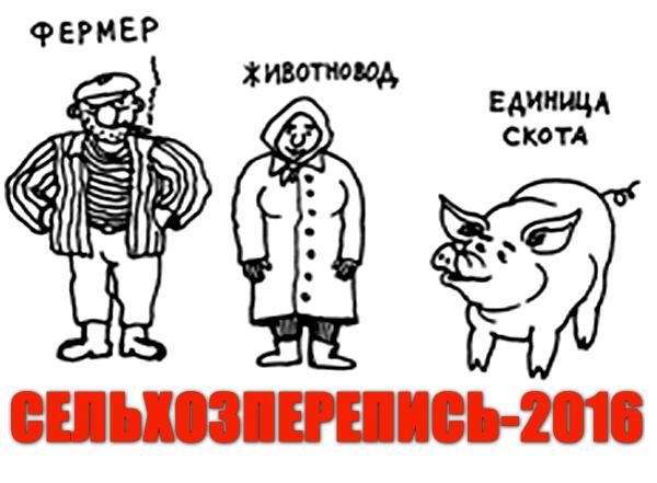 Росстат подвел первые оперативные результаты всероссийской сельхозпереписи