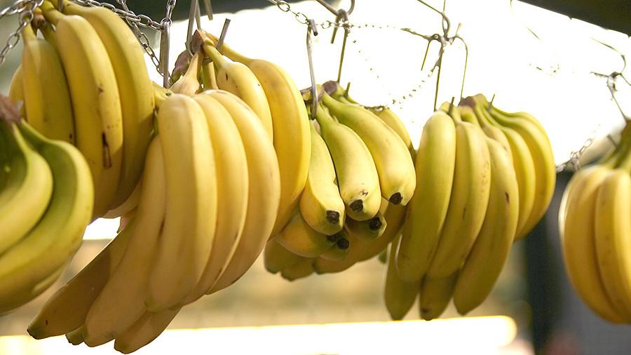 Самый известный сорт банана оказался под угрозой исчезновения